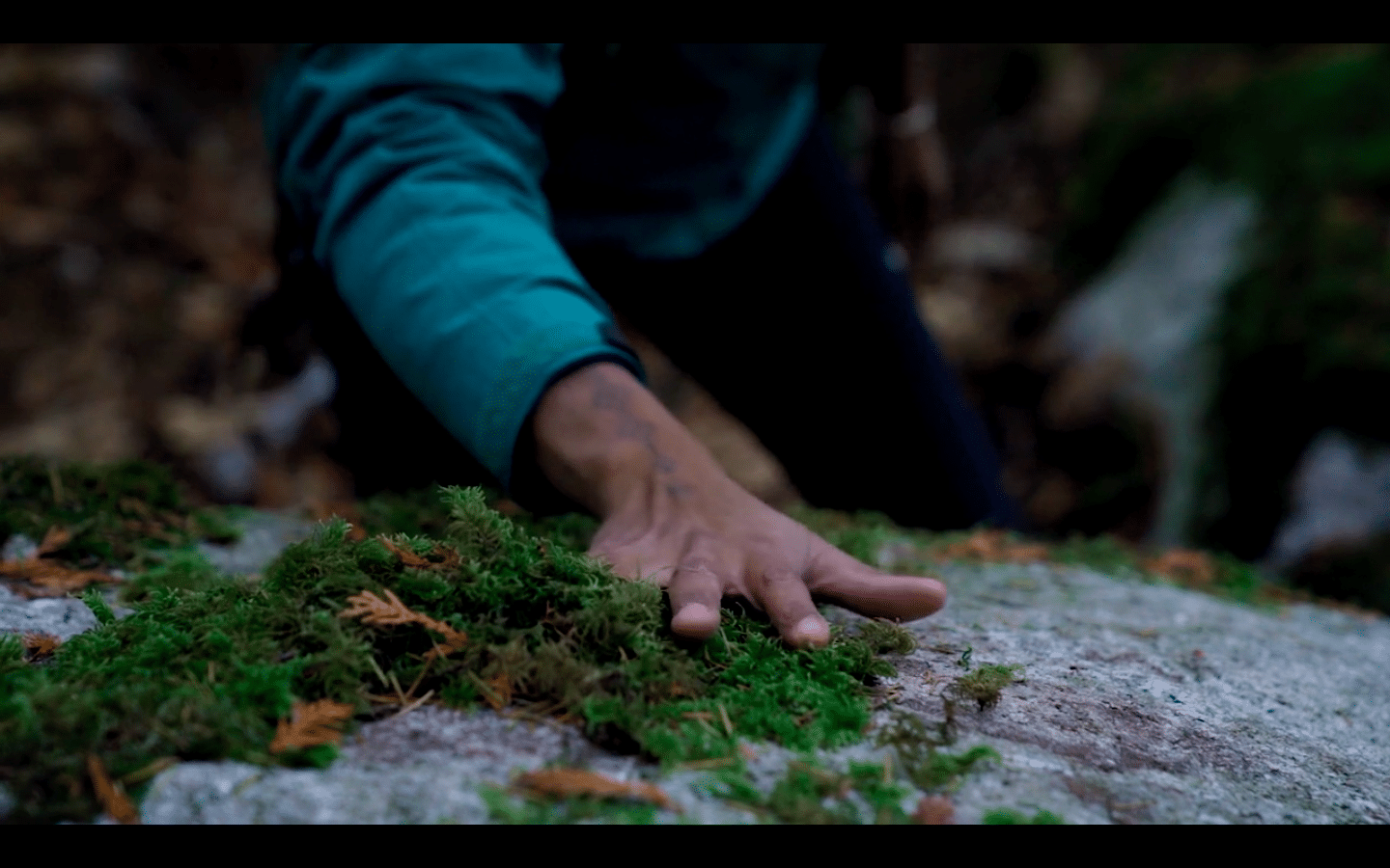 Nature Entwined: A Short Film